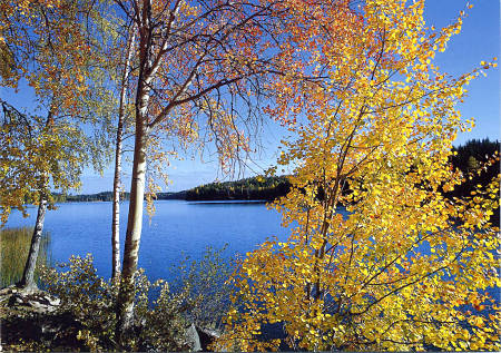 finlandia_lago.jpg