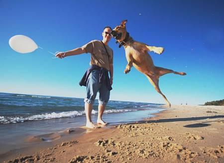 vacaciones_con_perro.jpg