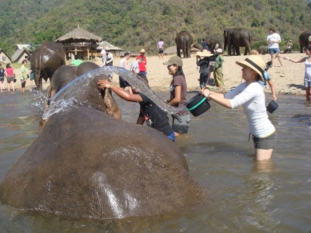 Parque Natural de Elefantes