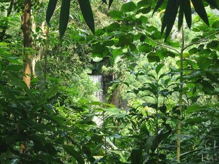 Parque Masoala