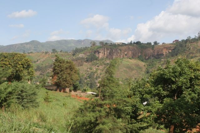 Bamenda, disfrutar de la flora en Camerún bamenda 3 – Ser Turista