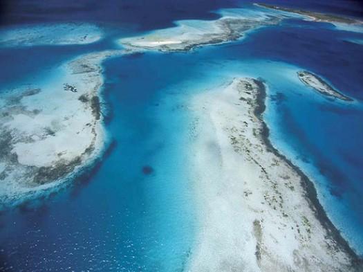 Imagen del Arrecife