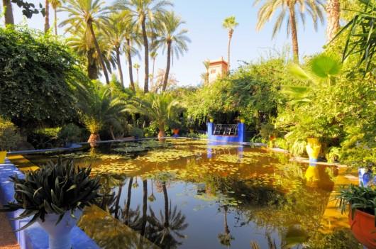 Jard n majorelle en marrakech ser turista for Les jardins de lee