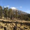 Pico de Orizaba 4