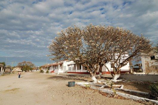 Isla de Ibo 2