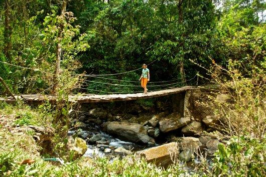 Parque Nacional Chirripo 2