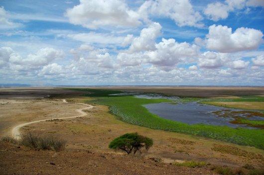 Parque Amboseli 2