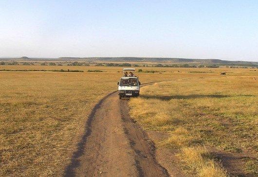 Safari Kenia y Tanzania 1