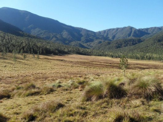 Pico Duarte 1