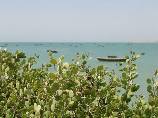 Gwadar 6