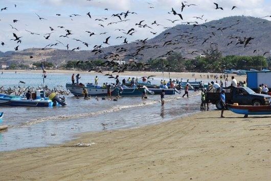 Puerto Lopez 2