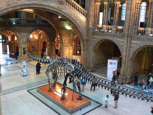 Museo de Ciencia Natural de Londres
