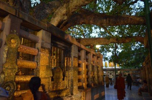 Templo Mahabodhi 3