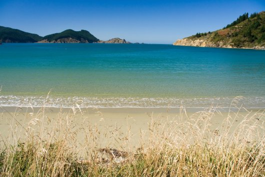 Marlborough Sounds 6