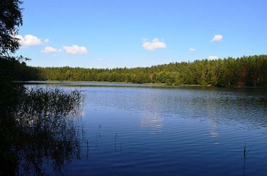 Parque Dzukija 4