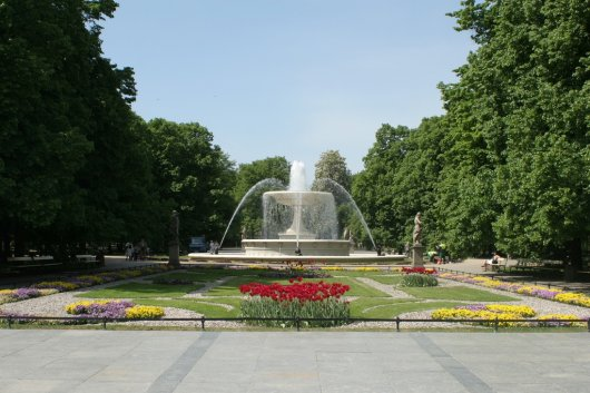 Jardin Sajon 6