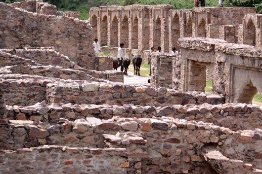 Fuerte Bhangarh 2