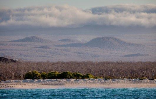 Isla de Santa Cruz 1