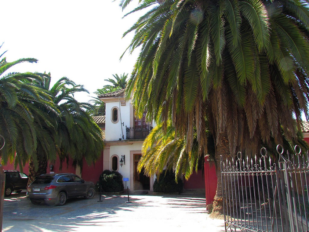 Santa Cruz 1