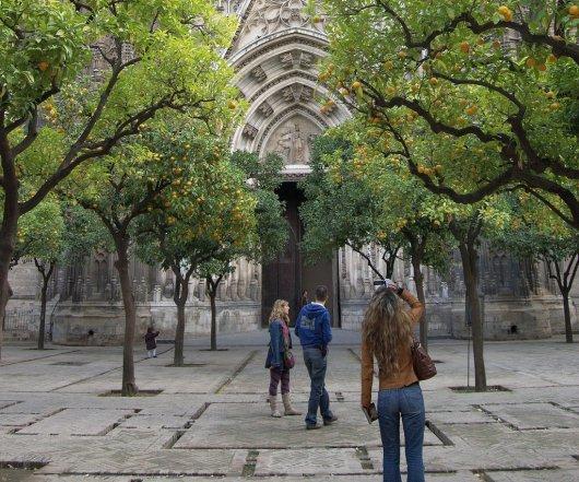 Patio de los Naranjos de la Catedral de Sevilla 5